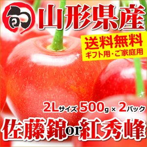 【出荷開始】 さくらんぼ 佐藤錦 秀品 1kg 2Lサイズ ...