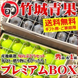 【9月中旬〜日時指定OK】シャインマスカット&ナガノパープル プレミアムBOXセット(産地厳選/秀品/各18粒×2箱)|ultra-taste