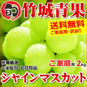【あすつく対応/出荷中】産地厳選 シャインマスカット 2kg(ご家庭用/2房〜4房)|ultra-taste