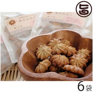 ギフト 愛荘玄米クッキーセット (黒ごま) 30g×6袋 滋賀県 関西 人気 贈り物 医者も認めた体...