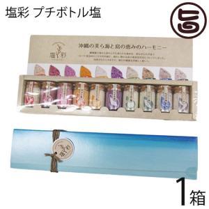 塩彩 プチボトル塩 5g×10本×1箱 カヨコーポレーション 沖縄 土産 沖縄土産  送料無料