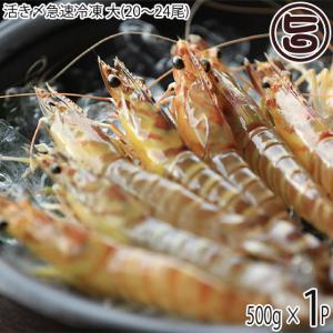 ギフト 活き〆急速冷凍 久米島の車えび 500g 大(20〜24尾)×1P 沖縄 人気 送料無料