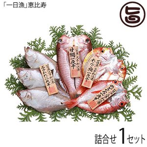 一夜干し「恵比寿」エテかれい、甘鯛、のどぐろ、れんこ鯛の詰合せ ギフト 島根県 条件付き送料無料