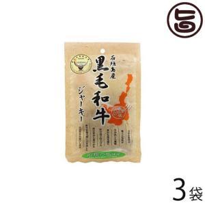 石垣島産 黒毛和牛ジャーキー 40g×3袋 送料無料 沖縄 人気 定番 おつまみ 珍味