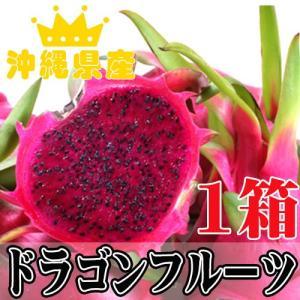 名人米須さんのドラゴンフルーツ レッド 約1kg(3-4個)×1 話題のレッドピタヤ 沖縄 土産 フルーツ  送料無料