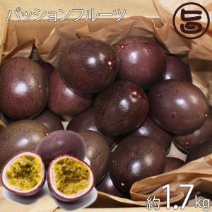 パッションフルーツ 沖縄県産 期間限定 約1.7kg 送料無料 沖縄土産 沖縄 土産 果物 ジュースやトッピングにも