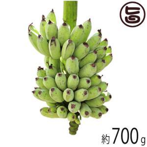 島バナナ 沖縄県産 無農薬 無化学肥料 ハワイ種 700g以上 送料無料 島バナナ 南国フルーツ 朝食
