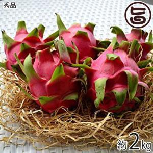 秀品 沖縄産 ピタヤ レッドドラゴンフルーツ 約2kg 沖縄 フルーツ お土産  条件付き送料無料
