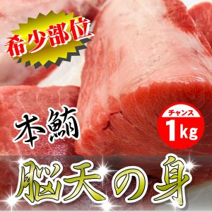 本まぐろ 脳天の身  1kg 【希少部位】刺身・寿司・しゃぶしゃぶに、脂のってます。|umaimono18