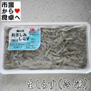 生しらす  500g(冷凍)CAS冷凍【静岡県御前崎近海産】刺身用|umaimono18