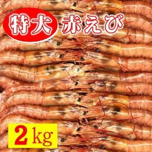 赤 えび 【サイズ10/20・2kg 約20-40尾】【ボタン海老にも負けない甘さです】刺身・寿司・...
