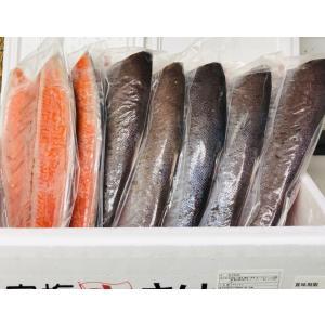 銀鮭 ・ 中辛塩 【8kg・7枚前後】脂あります。インジェクション加工はしておりません!|umaimono18