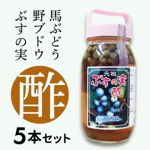 【会津産】 ぶすの実酢 6本セット 馬ぶどう 野ぶどう |umaimonoaizu