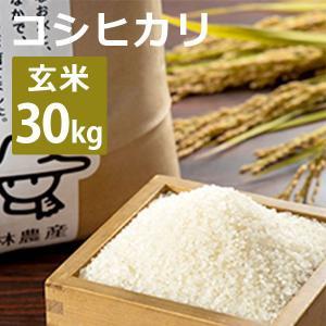 林農産 富山産コシヒカリ(玄米・30kg)令和2年度|umaimura