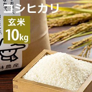 林農産 富山産コシヒカリ(玄米・10kg)令和2年度|umaimura