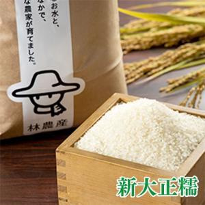 林農産 もち米 新大正糯(精米・10kg)令和2年度 - 切り餅、赤飯、おはぎ、おこわ、何にでも合うもち米|umaimura