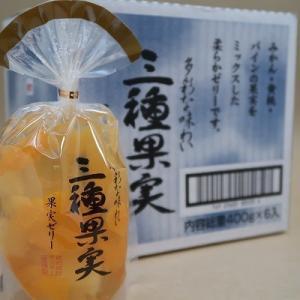 サンヨー堂 多彩な味わいの 三種果実ゼリー 400g×6個セット ギフトにも最適な包装無料サービス対応品|umairadotcom