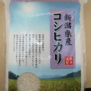 新潟県産コシヒカリ100% 5kg 新潟(株)藤井商店 末広 うるち米|umairadotcom