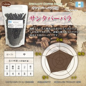 グアテマラ サンタバーバラ農園 お試しサイズ|umakacoffee-store