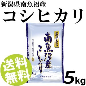 お米 5kg 白米 コシヒカリ 南魚沼産 精白米 送料無料 贈答品 お取り寄せ|umakore