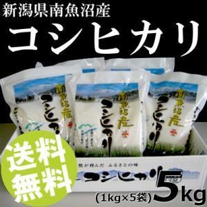 お米 5kg 白米 コシヒカリ 南魚沼産 精白米 1kg×5袋 送料無料 贈答品 お取り寄せ umakore