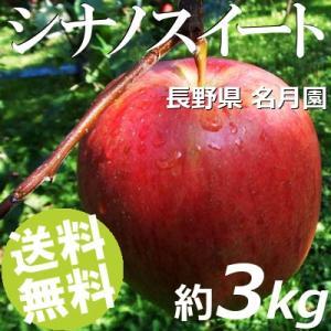 りんご 3kg 9〜12玉 シナノスイート 長野県名月園 送料無料 贈答品 お取り寄せ|umakore