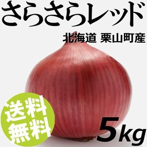 赤玉ねぎ さらさらレッド 5kg 20〜25玉 北海道栗山町 健康たまねぎ 送料無料 贈答品 お取り寄せ|umakore