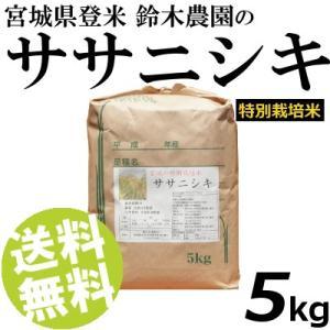 お米 5kg 白米 ササニシキ 宮城県登米産 精白米 特別栽培米 送料無料 贈答品 お取り寄せ|umakore