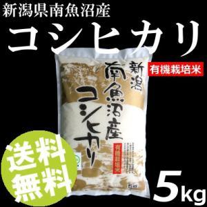 お米 5kg 白米 コシヒカリ 南魚沼産 精白米 有機栽培米 送料無料 贈答品 お取り寄せ|umakore
