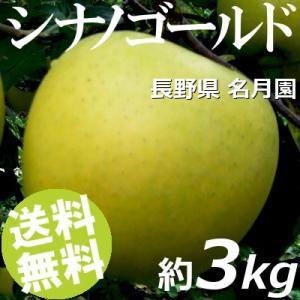 りんご 3kg 9〜12玉 シナノゴールド 長野県名月園 送料無料 贈答品 お取り寄せ|umakore