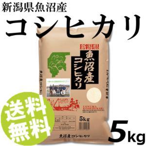 お米 5kg 白米 コシヒカリ 魚沼産 精白米 送料無料 贈答品 お取り寄せ umakore