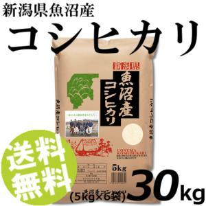 お米 30kg 白米 コシヒカリ 魚沼産 精白米 5kg×6袋 送料無料 贈答品 お取り寄せ|umakore