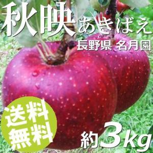 りんご 3kg 9〜12玉 秋映 あきばえ 長野県名月園 送料無料 贈答品 お取り寄せ|umakore