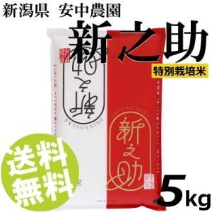 お米 5kg 白米 新之助 新潟県産 精白米 特別栽培米 安中農園 送料無料 贈答品 お取り寄せ|umakore