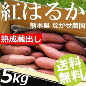 さつまいも 5kg M-Sサイズ 20〜25本入 紅はるか ベニーモ 熟成蔵出し 熊本県 なかせ農園 送料無料 お歳暮 母の日 敬老の日 贈答品 お取り寄せ|umakore