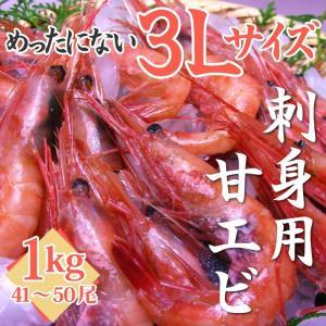甘エビ1kg(3Lサイズ)刺身用(41〜50尾)化粧箱入り  ※えび、海老、甘えび、甘海老