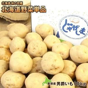 新じゃがいも ジャガイモ 男爵芋約10kg(M〜2Lサイズ)北海道美瑛産 減農薬栽培 送料無料 ジャガイモ 芋 北海道美瑛より直送|umakou