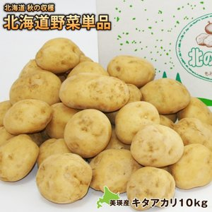 新じゃがいも ジャガイモ キタアカリ約10kg(M〜2Lサイズ)北海道美瑛産 減農薬栽培 送料無料  ジャガイモ 芋 北海道美瑛より直送|umakou