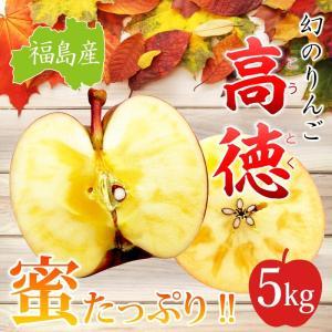 ご贈答用 福島産 高徳りんご5kg(15〜25玉)【送料無料】  ※ご贈答 こうとく 林檎 リンゴ りんご 蜜 umakou