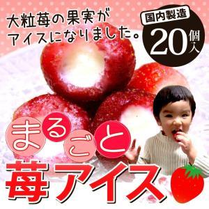 いちご 苺 イチゴ まるごと苺アイス 20粒 大粒の果実がまるごとアイスに♪【送料無料】|umakou