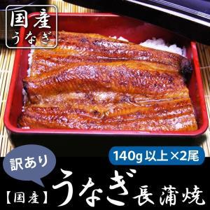 うなぎ長蒲焼140g以上×2尾 訳あり国産(鹿児島県) ※鰻...