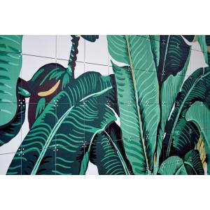 IXXI Banana Leaf - large [160*120]|umd-tsutayabooks