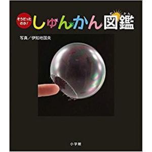 2019課題図書 そうだったのか! しゅんかん図鑑 小学館 |umd-tsutayabooks