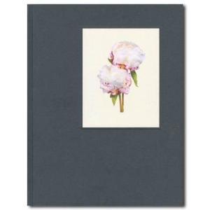 THE MOST BEAUTIFUL FLOWERS 著:Kenji Toma|umd-tsutayabooks