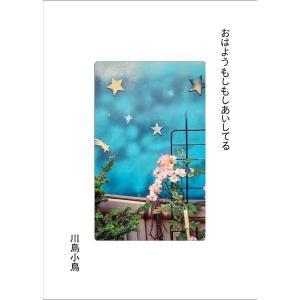 川島小鳥写真集『おはようもしもしあいしてる』