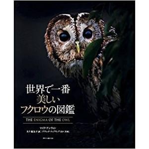 世界で一番美しいフクロウの図鑑  マイク・アンウィン (著), デヴィッド・ティプリング (写真), 五十嵐 友子 (翻訳)  エクスナレッジ|umd-tsutayabooks