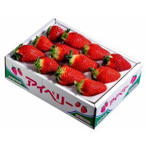 いちご イチゴ 果物 苺 千葉県産 アイベリー 12〜15粒 約500g フルーツ 国産 ギフト 贈り物 プレゼント 贈答 お取り寄せ お礼 お返し 冷蔵|umeebeccyasannriku|05