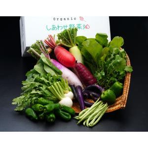 『オーガニック・しあわせ野菜うまいもんセット』静岡県掛川市産 季節の有機野菜8〜10袋 ※冷蔵 送料無料|umeebeccyasannriku