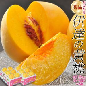 送料無料 福島県産 伊達の黄桃 約1.5キロ(5〜10玉)常温 ふくしまプライド。体感キャンペーン(果物/野菜)
