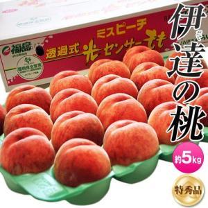 桃 もも 福島県産 伊達の桃 特秀品 13〜22玉 約5kg 送料無料 umeebeccyasannriku